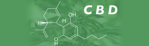 cbd cancer